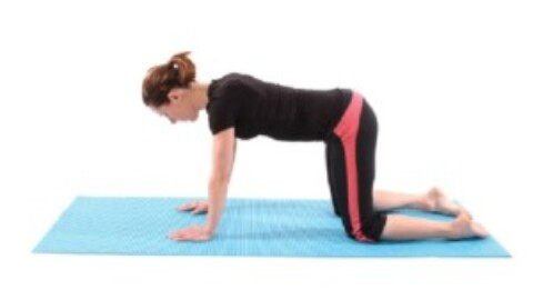 HOME EXCERCISES FOR YOUR BACK PAIN